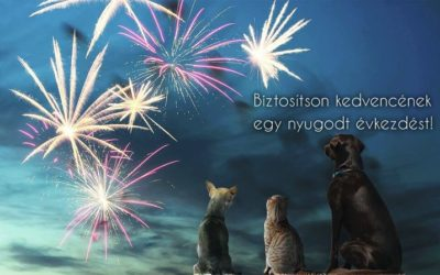 Ebben az évben is legyen nyugodt az ünneplés!…
