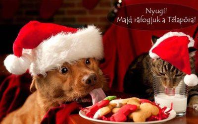 Áldott Karácsonyt és Kellemes Ünnepeket kívánunk minden kedves Gazdinak! ️ …